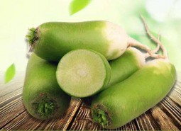 甘肃金昌东湾绿萝卜600平米蔬菜保鲜冷库设计建造方案
