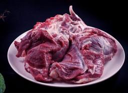 青海玉树扎什加羊肉230平米冷藏库设计安装工程建造方案