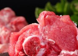 青海格尔木蒙古羊肉630平米冷冻库设计安装工程建造方案