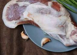 甘肃兰州大尾羊肉560平米冷冻库设计安装工程建造方案