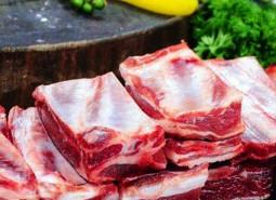 甘肃甘南玛曲县欧拉羊肉120平米冷冻库设计建造方案