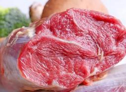 青海天峻牦牛肉600平米冷冻库设计方案