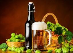 宁夏啤酒花1300平米冷库设计安装工程建造方案