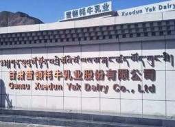 甘肃甘南夏河县雪顿牦牛乳业300平米牦牛乳冷库建造工程
